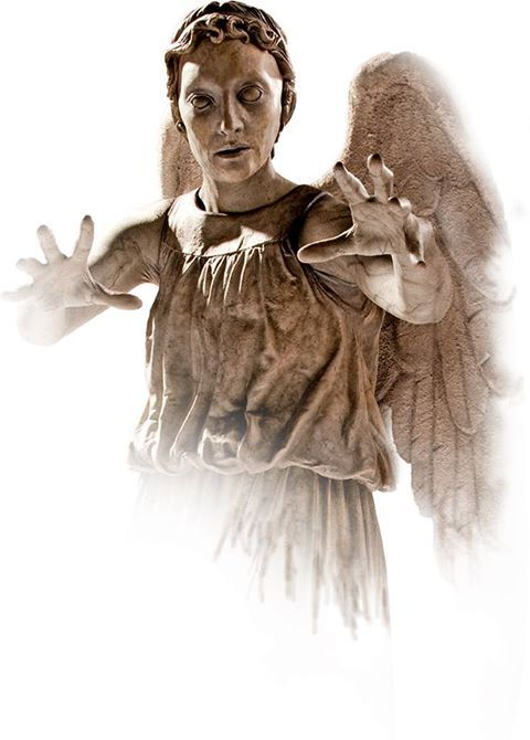 Weeping Angel    From the T.A.R.D.I.S (FaceBook)