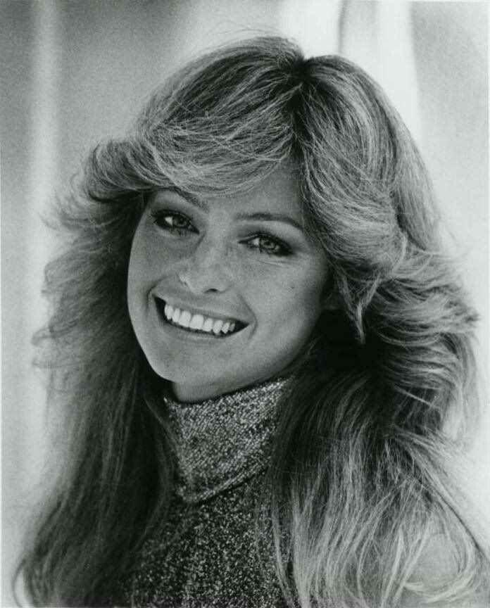 70 S Hairstyles 1970s Hairstyles Hair Styles 70s Hair