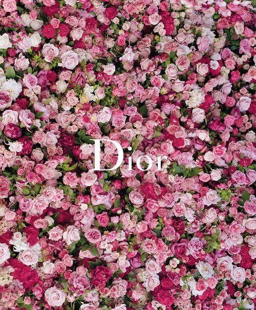 Dior floral campaign...roses