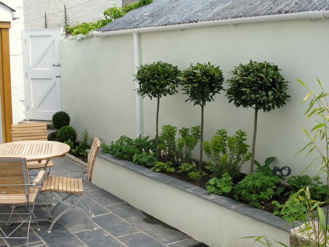 raised garden modern courtyard - Google Search King Back Garden
