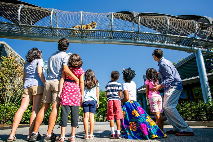 34 Great Things to Do with Kids in Philadelphia (With