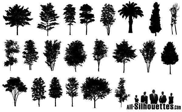 Tree 7 Vector Trees Tree Icon Leaves Vector