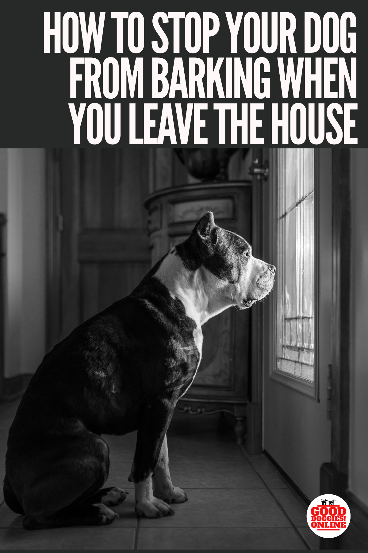 How To Stop Your Dog From Barking When You Leave The House Check Out These Dog Training Tips To Help Stop Ba Good Doggies Online Dog Training Stop Dog Barking