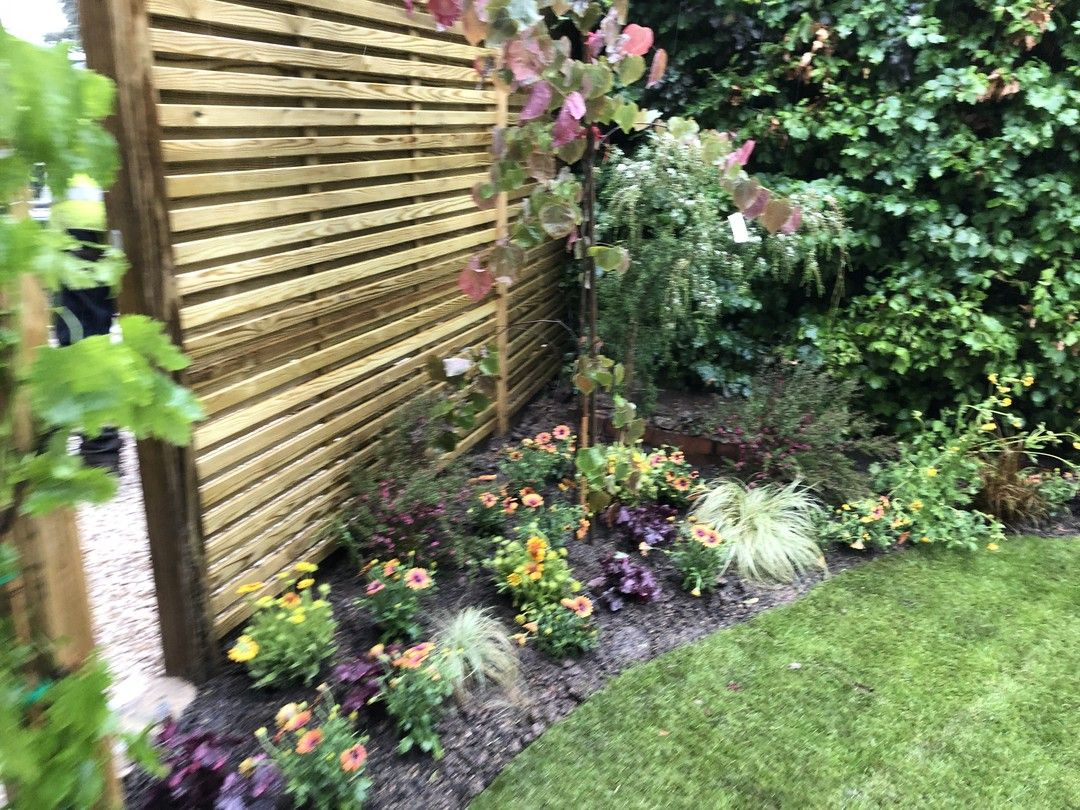 Photo Of The Finished Garden From Tonight S Loveyourgarden Plants Garden Instagram