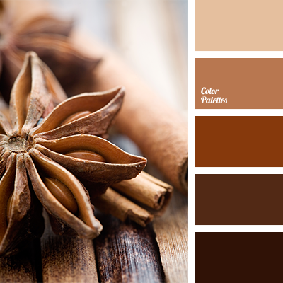 Brown And Beige Cinnamon Color Combination In The Interior Selection For Living Room Decoration Dark Light Monochrome