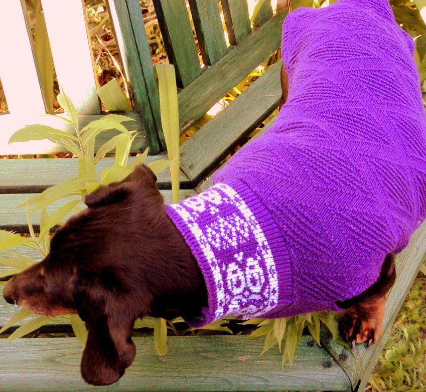 free crochet patterns dog sweaters, dog outfits, crochet dog sweater ...
