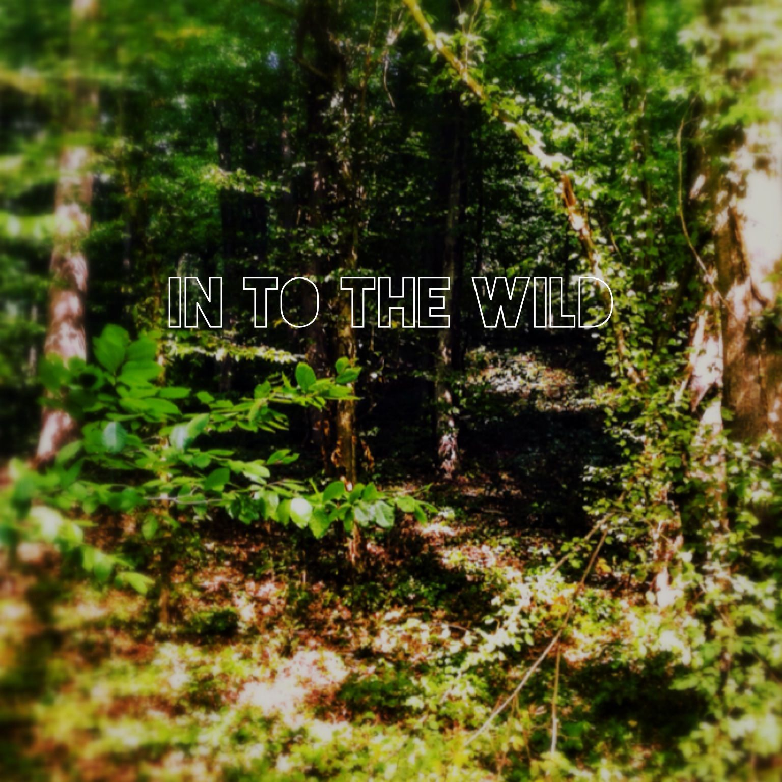 İn to the wild #over
