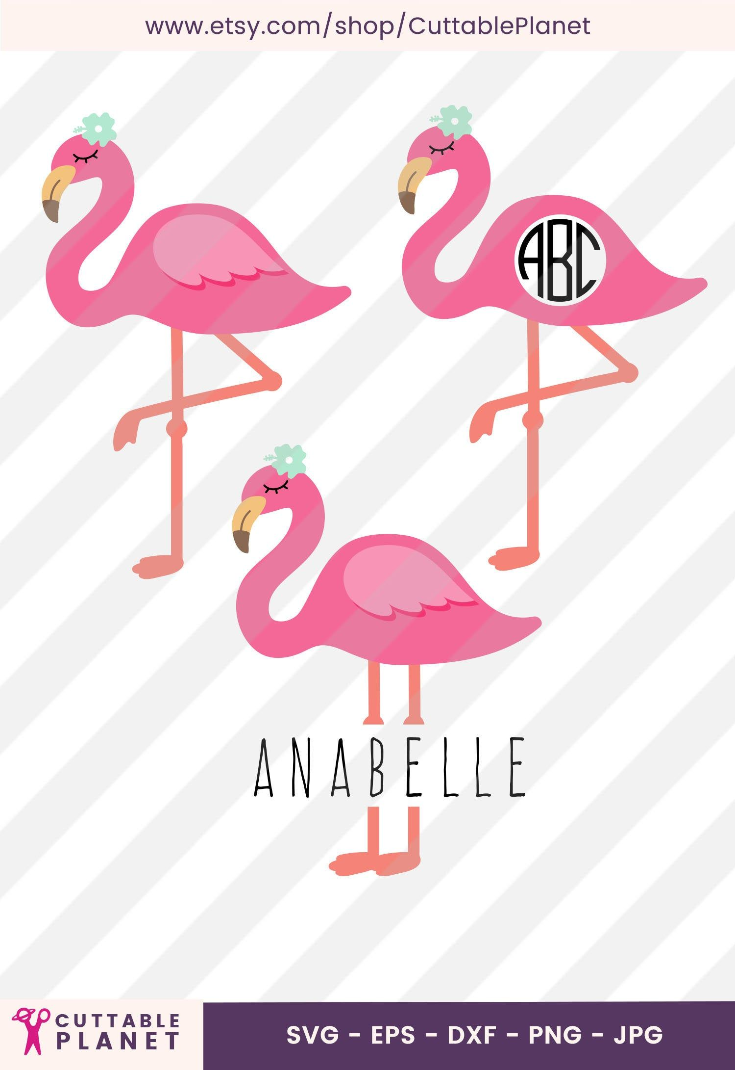 Pink Flamingo With Flower Svg Dxf Eps Png Jpg Monogram Pink Flamingo Split Pink Flamingo