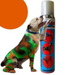 PetPaint Pet Hair Spray 5Ounce Old Dog Orange * Click on the image for additional details.