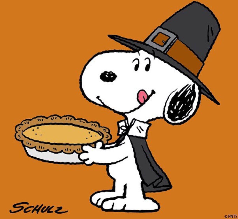 Snoopy | Thanksgiving!!!!!!! | Pinterest | Snoopy, Acción y Gracias