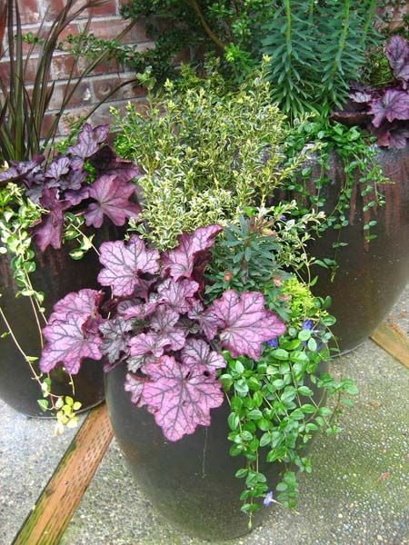 Awesome Find Many Fresh Planting Ideas For Your Containers In Our Fall Gallery!  Youu0027ll Find Ideas For Large Container Gardens And Patio Container Gardening.