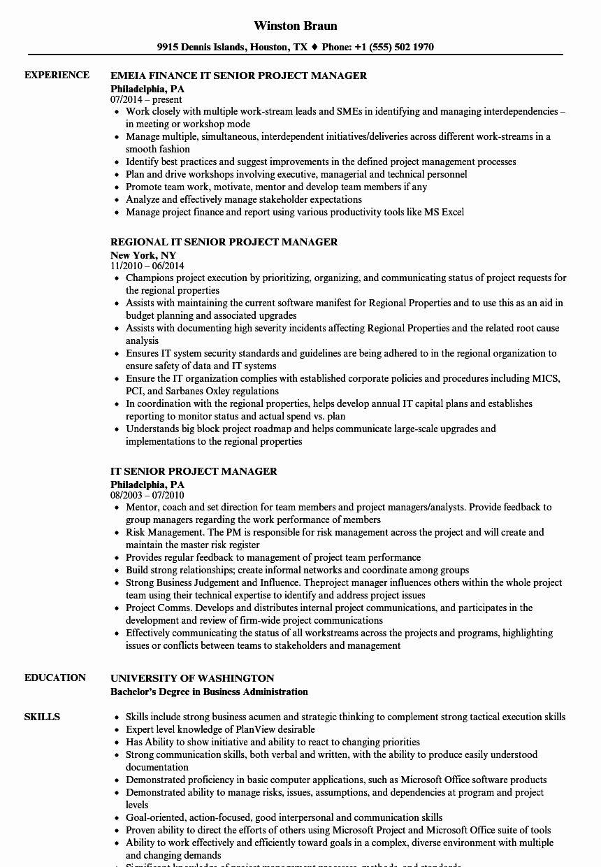 34+ Salesforce administrator resume skills Format