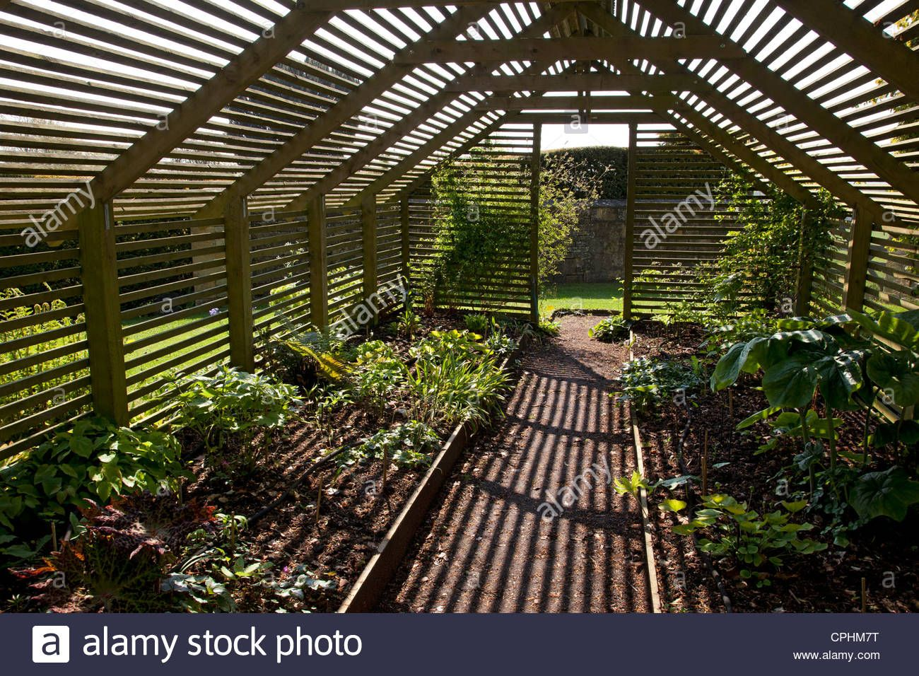 Stock Photo Wooden Slated Plant Shade House Garden England Shade House Garden Design Pergola Backyard shade house designs