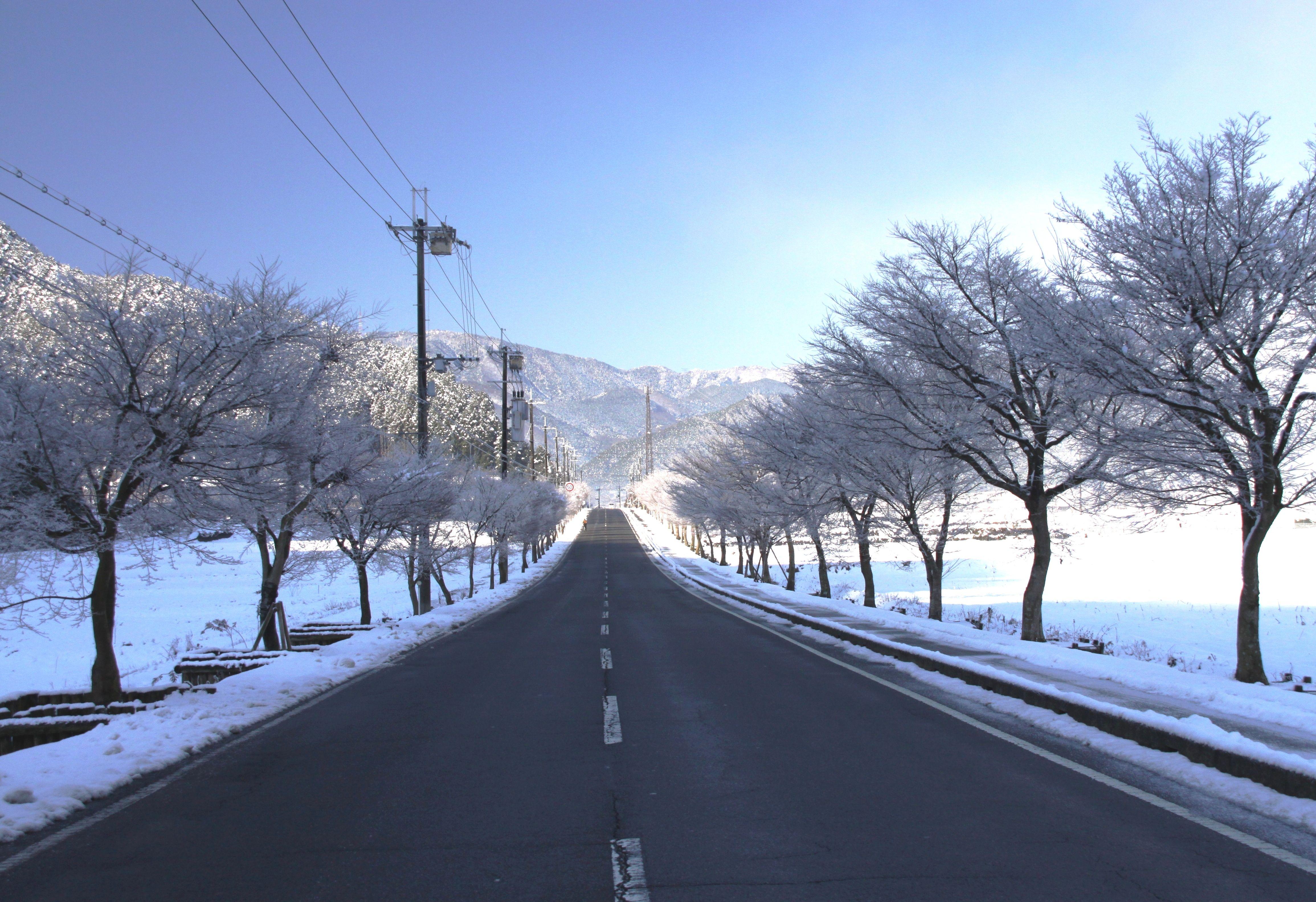 青垣地域 雪化粧