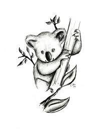 Image Result For Koala Outline Koala Drawing Koala Tattoo Koala Illustration