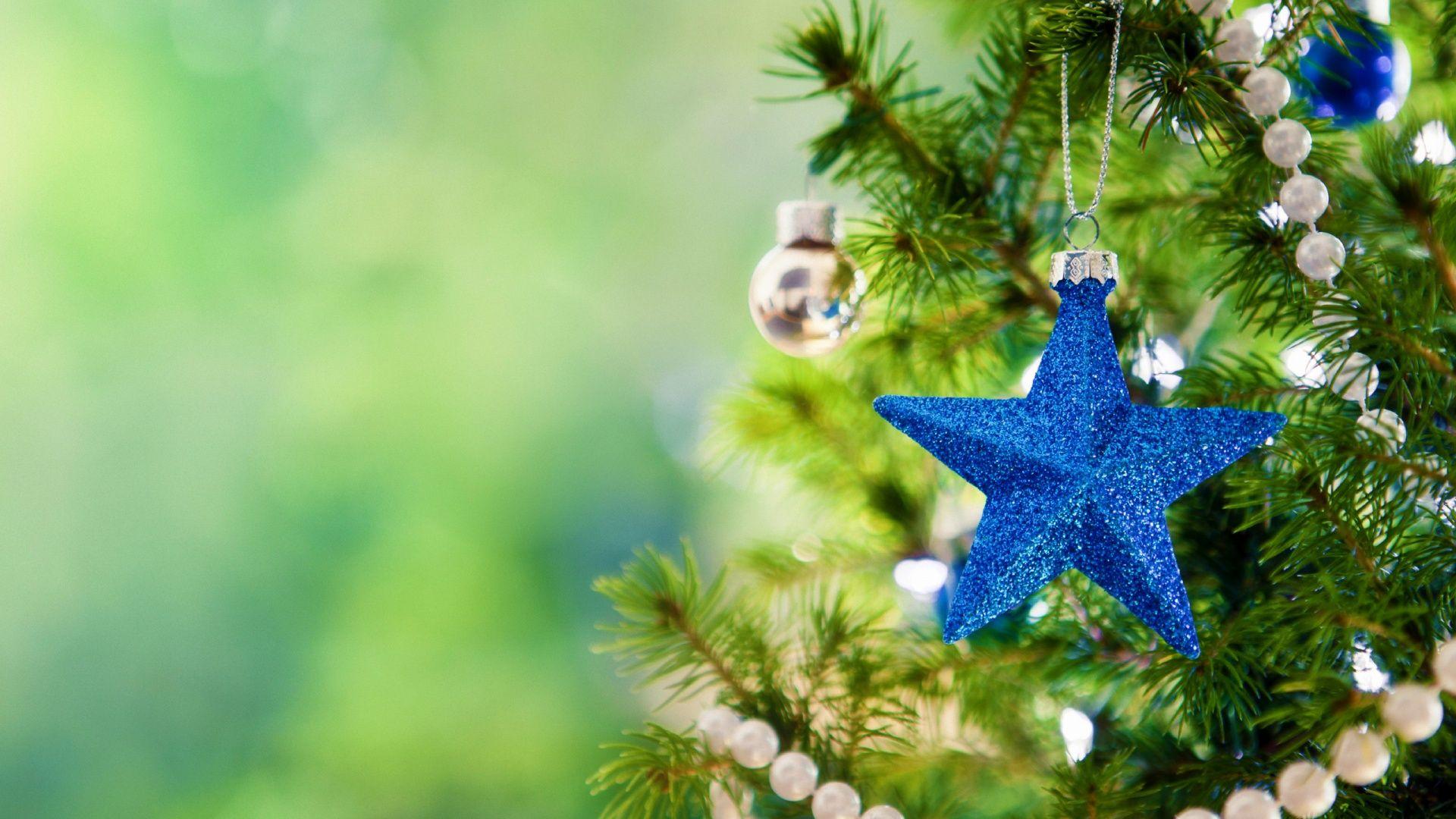 Christmas Tree Hd 1080p Wallpapers Download Fondo De Pantalla Navidad Hd Imagenes De Arbol De Navidad Fondo De Pantalla Navidad