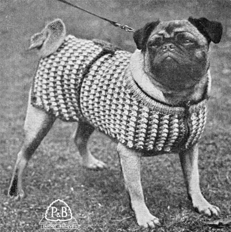 Dog Coat 3 Sizes 8ply Or Dk Dog Coat Knitting Pattern And The