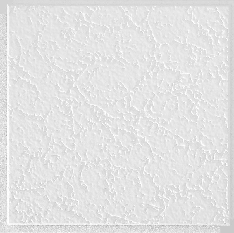 Armstrong Bp258g 12 X 12 Inch White Grenoble Textured Ceiling Tile 40 Pieces At Sutherlands Armstrong Ceiling Ceiling Texture Tongue And Groove Ceiling