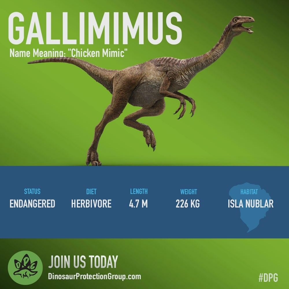 Image result for gallimimus fallen kingdom