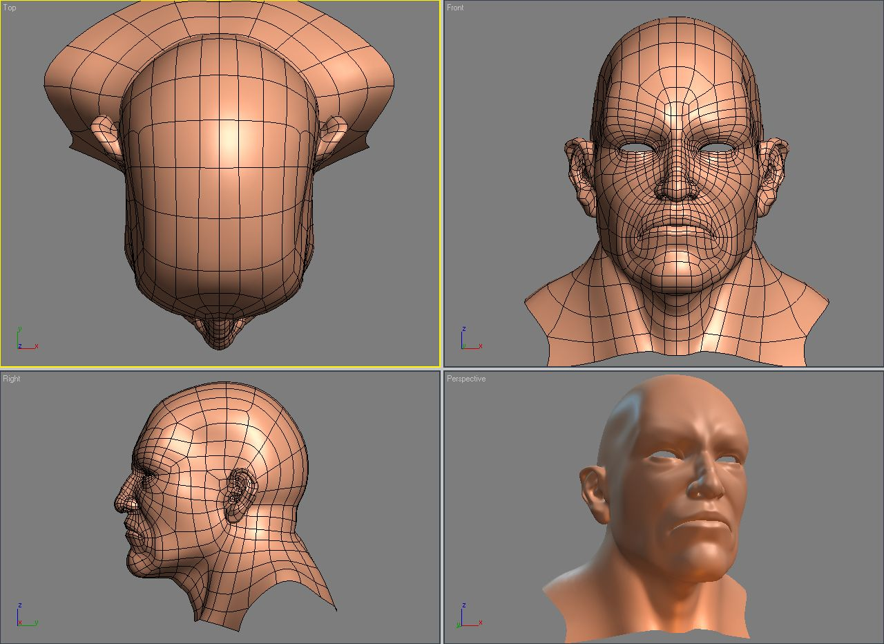 Female Face Topology - Bing images