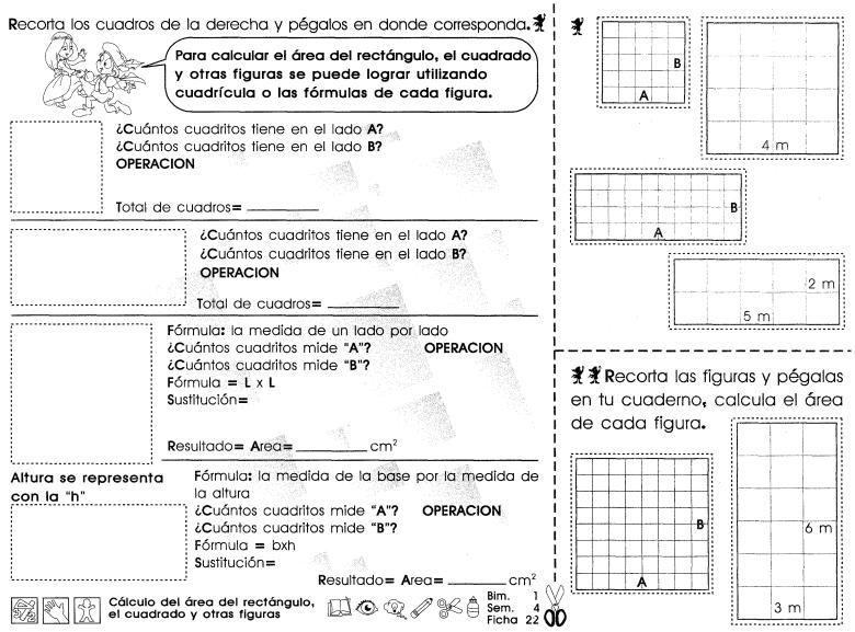 Calculo Del Area Del Rectangulo El Cuadrado Y Otras Figuras 5to