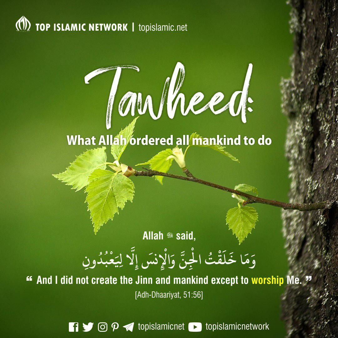 Tawheed What Allah Ordered All Mankind To Do Allah Islam Sayings