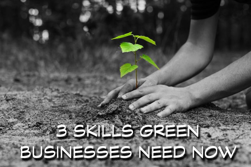 Find Out What 3 Skills Green Businesses Need Now! eco