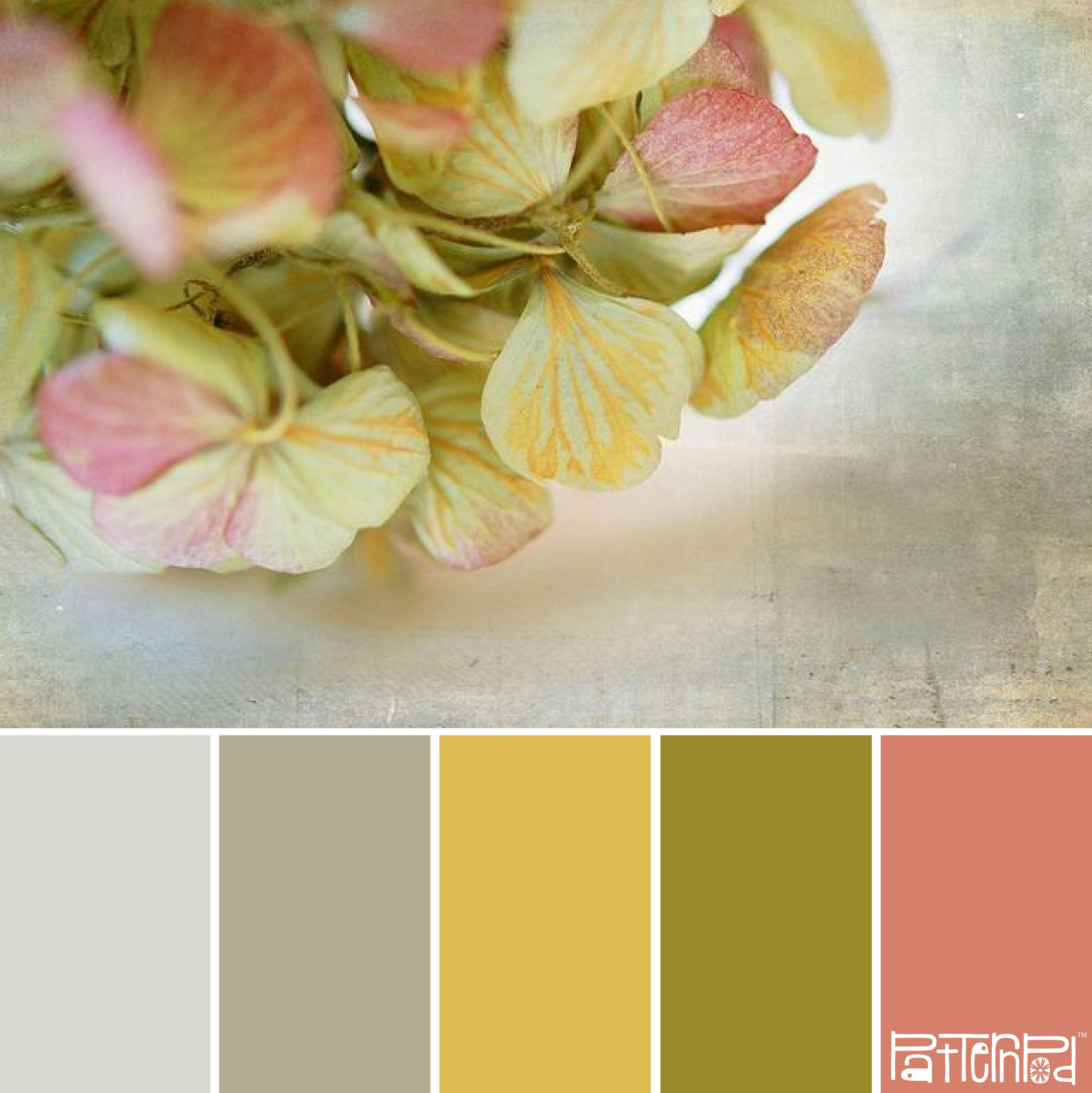 Such Gorgeous Colors And Softness: Tonos Y Colores