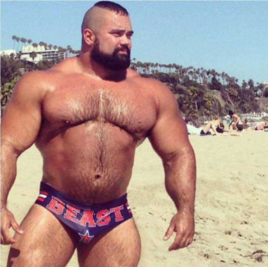 Huge muscle bears