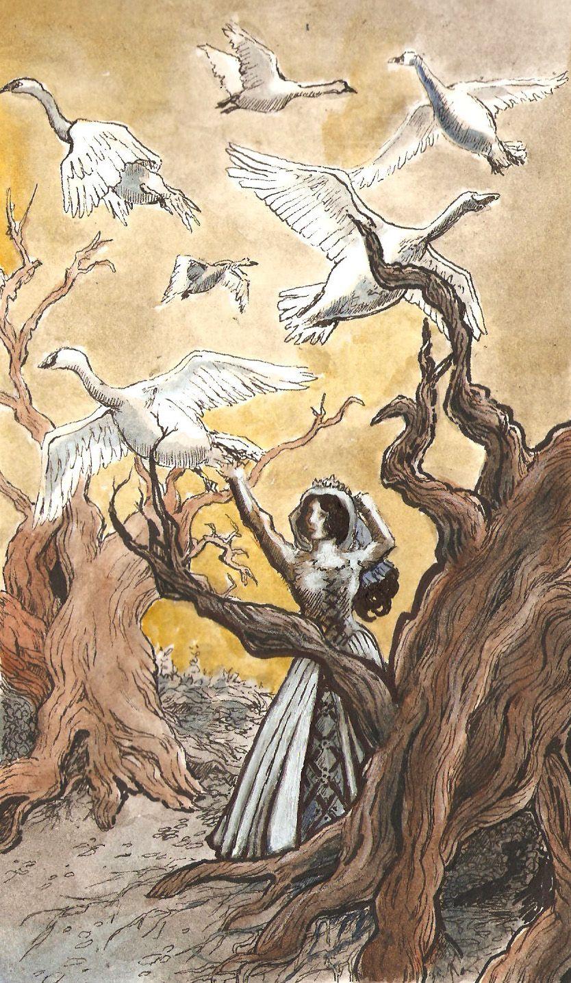 иллюстрации к сказке шесть лебедей этот раз наш