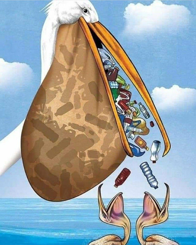 O mar não está para Plástico em 2020 Mares vivas, Mares