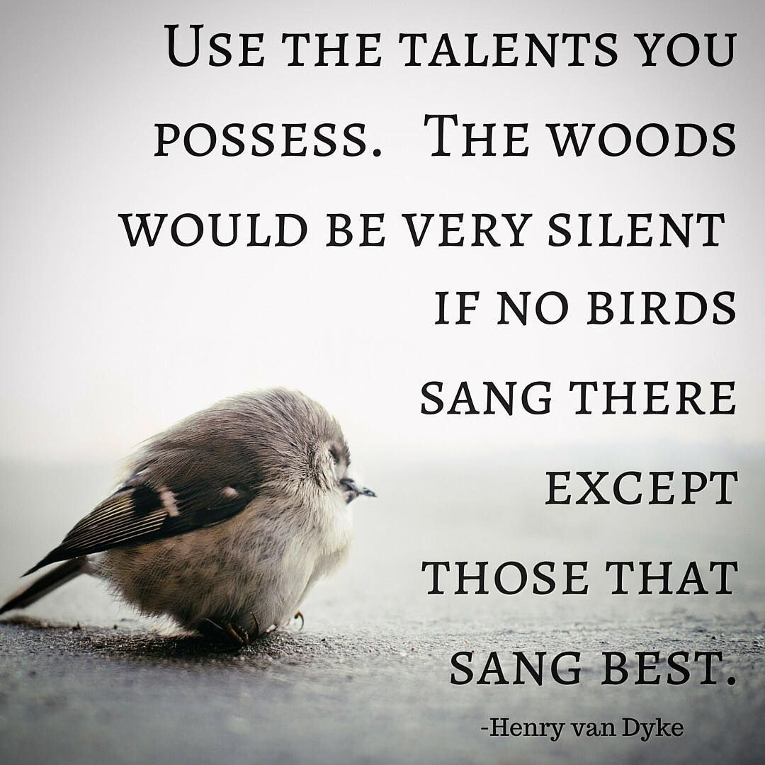 Inspirational Quote: Use The Talents You Possess. The