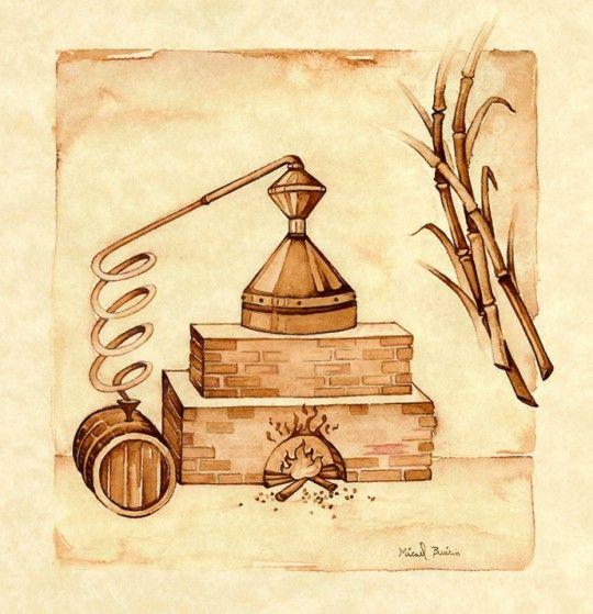 Ilustracao Do Rotulo Da Cachaca Velho Alambique De Santa Tereza