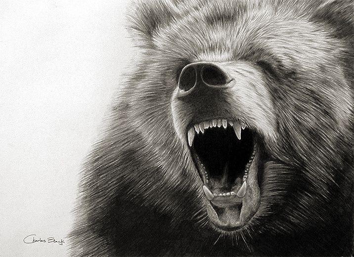 grizzly bear roar bears pinterest bears tattoo and