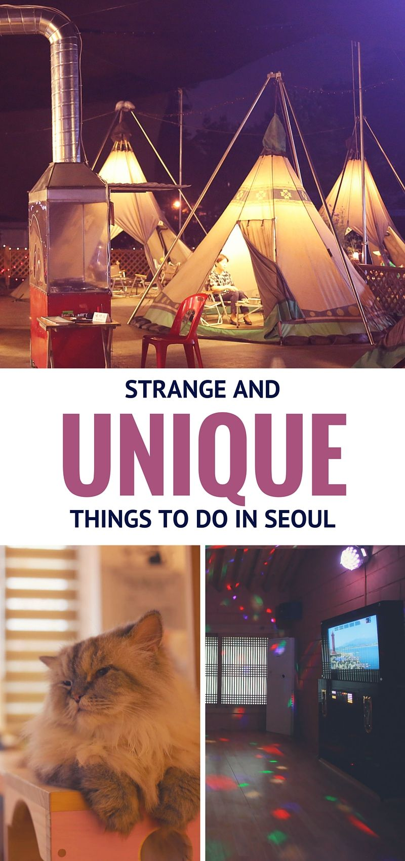 """Strange // Unique Things to do in Seoul! - """"Known for its odd combinations and unique products, Seoul has no shortage of strange offerings to visitors and residents alike. The largest city in South Korea, Seoul melds Korean influences with foreign ones like no other city. These uniquely Korean takes on marketable ideas often produce puzzling, yet wonderful, results."""""""