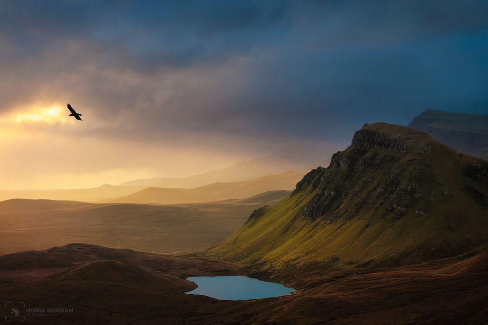 Daily Dozen For Nov 16 2016 Photos National Geographic Your Shot Nature Photography Nature Photos Landscape Photography