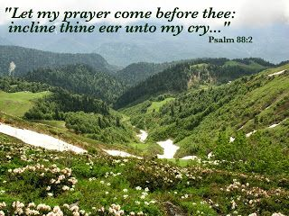 Psalm 88:2 (KJV) ~ Let my prayer come before thee: incline thine ear unto my cry;