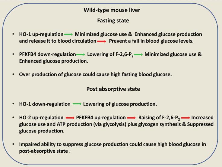 high blood sugar fasting causes - SECRET !! in 2020   High blood sugar  causes, Lower blood sugar naturally, How to control sugar