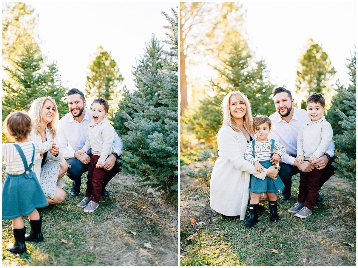 Baird Tree Farm Pictures Utah Family Photographer Truly Photography Utah Family Photographer Tree Farm Pictures Farm Pictures
