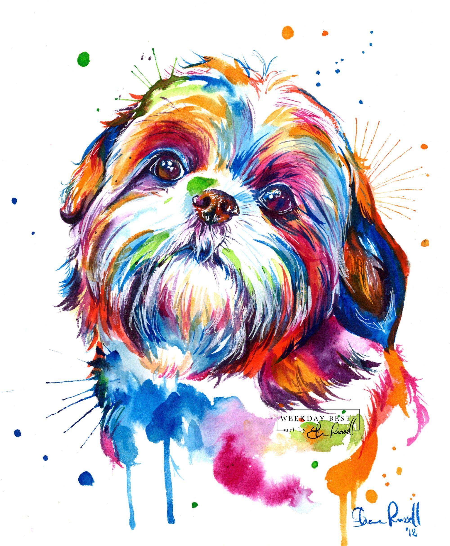 Colorful Shih Tzu Watercolor Print Art Print Of My Original