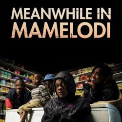 Meanwhile in Mamelodi The World Cup in a Pretoria township and the life of an ordinary family: struggle for survival, teenage problems, business—and vuvuzelas