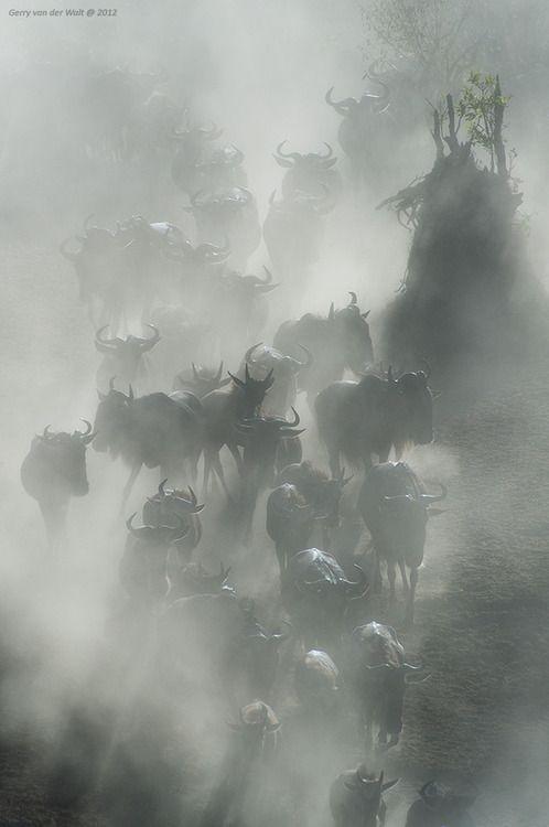 Approaching the Crossing by Gerry van der Walt via Earthshots. S)