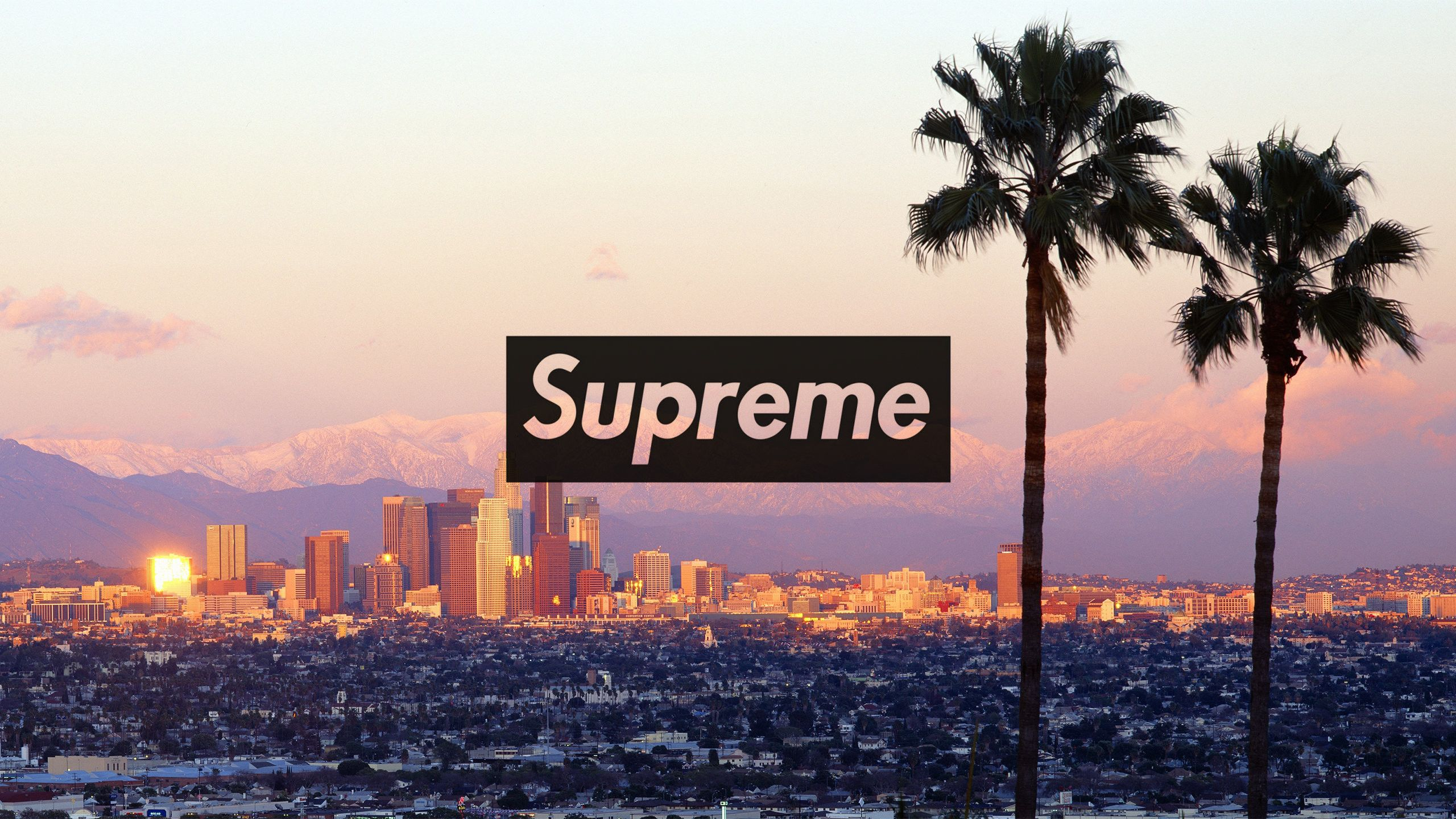 2560x1440 Download The Los Angeles Supreme Wallpaper Below For Your Mobile Dev Supreme Wallpaper Computer Wallpaper Desktop Wallpapers Supreme Iphone Wallpaper