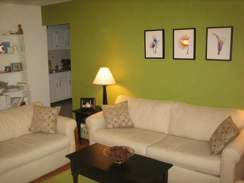 3. Mint Green feature wall, black furniture, white couch | Living ...