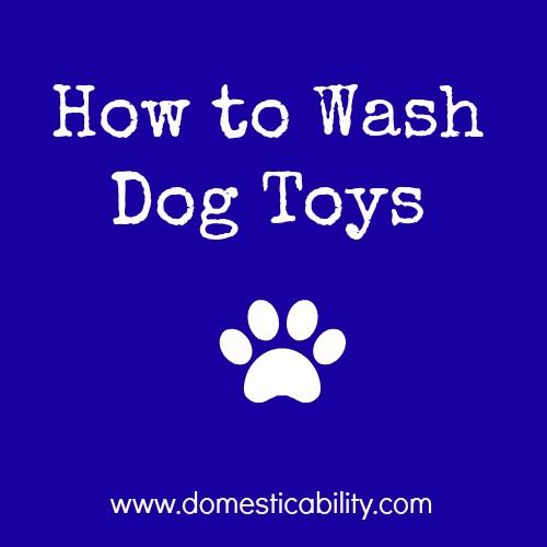 Domesticability How To Wash Dog Toys Dogtoys Domesticability