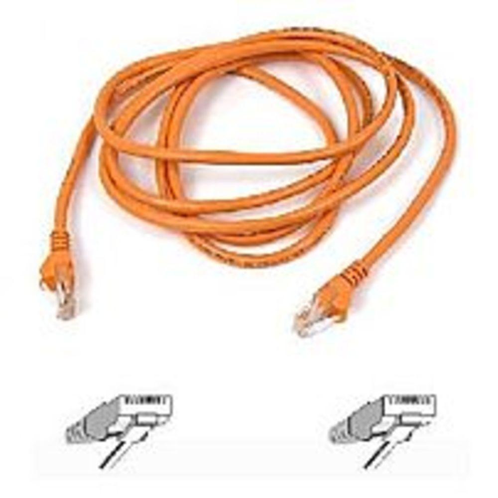 m Utp Rj-45 - 4 Ft Cat 5e Belkinponents Patch Cable m - Rj-45