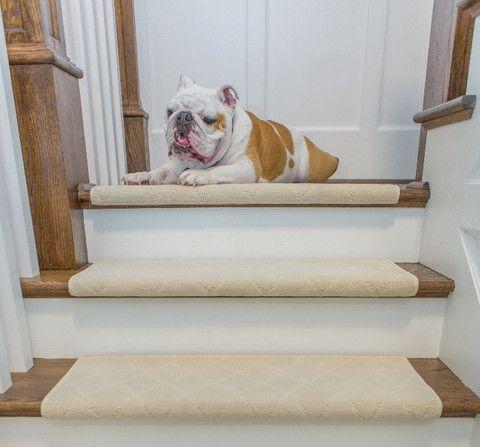 Carlisle Adhesive Bullnose Carpet Stair Tread Bullnose Carpet Stair Treads Carpet Stair Treads Stair Treads