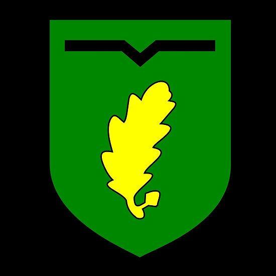 Jager Regiment 1 German Bundeswehr Regiment Military Insignia German