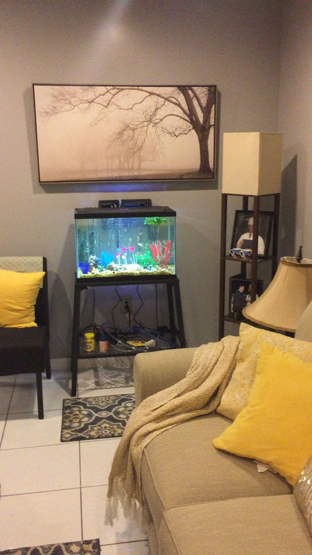 new fish tank | remodels (living room, sitting area, dining area