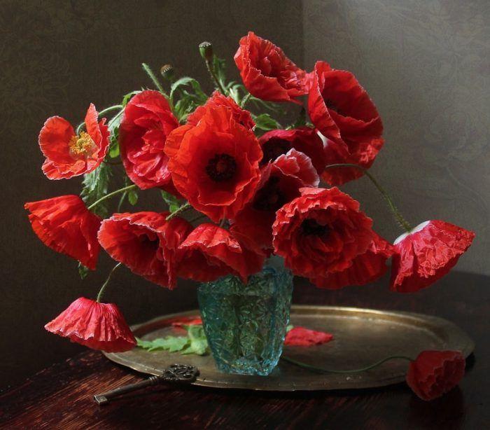 натюрморты Марины Филатовой -4-09 | Маки цветы, Цветы, Маки